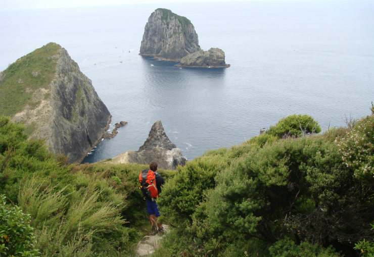 Cape Brett track, hole in the rock