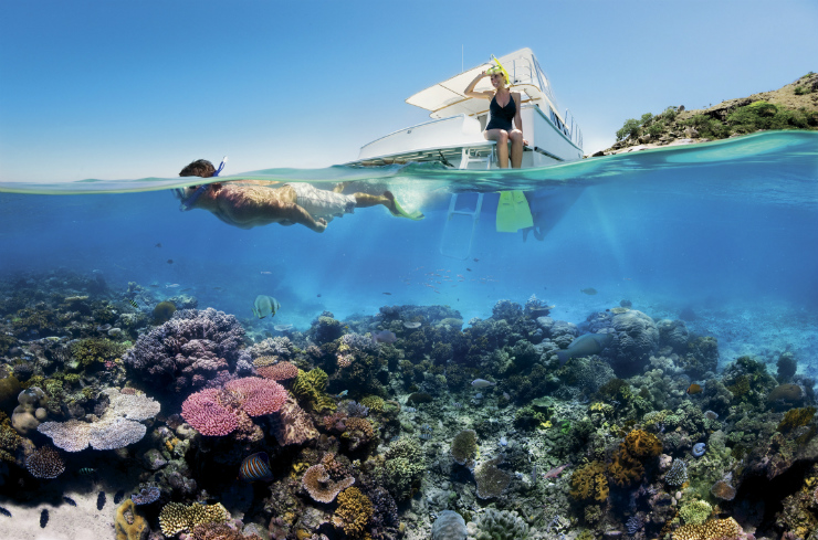 Snorkelling Great Barrier Reef, Australia