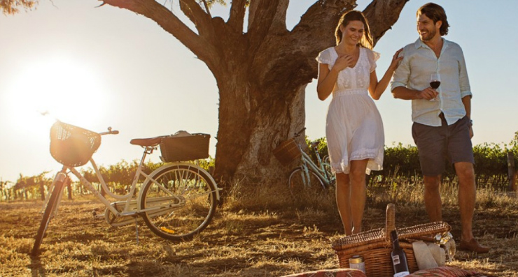 Cycle and wine, Australian vineyard