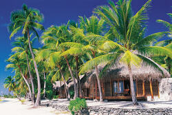 Tailor Made New Zealand and Tahiti Vacation