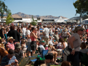 Marlborough Wine & Food Festival 2014