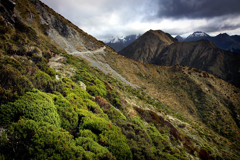 The Kepler Track - Photo credits http://www.flickr.com/photos/lozzah/2174655284/