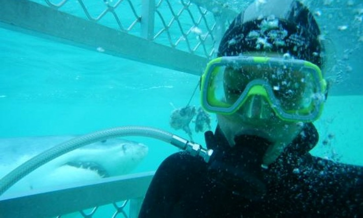 Truly an exciting New Zealand experience! Getting up close and personal with the great white shark.