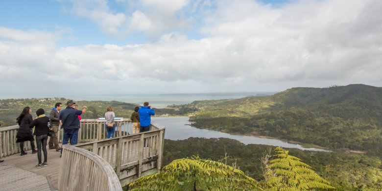 Auckland Recommended Activities