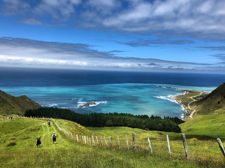 Tora Coastal Walk, New Zealand