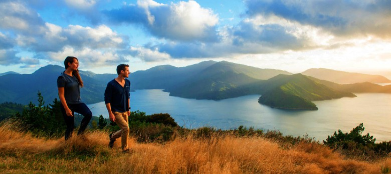 Hiking Queen Charlotte Track