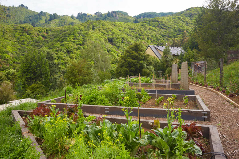 The Vege-garden at Resurgence Eco Lodge, creating sustainable luxury New Zealand accommodation