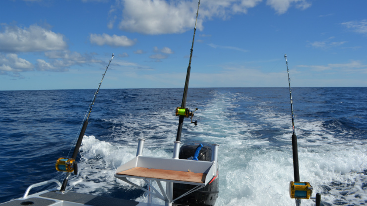 Fishing off Auckland's West Coast
